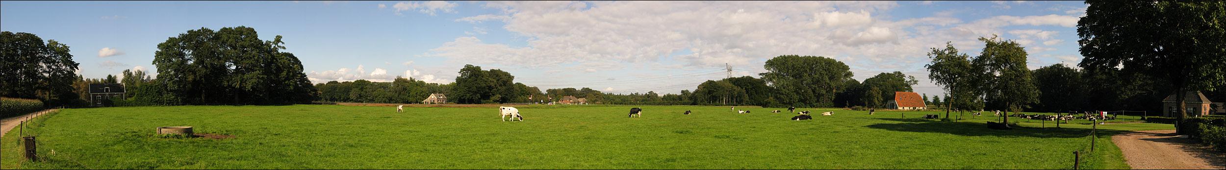 Panorama: Countryside