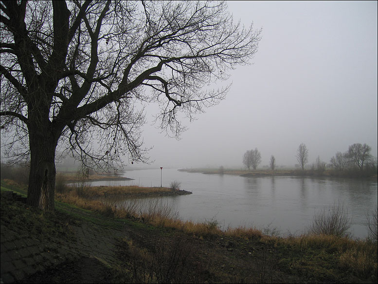 The River on a Foggy Day