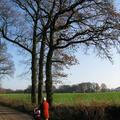 Twente IX